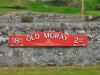 moray-6