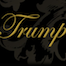 Thumbnail image for Trumped at Trump International